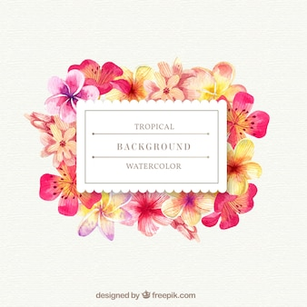 Tropical background with watercolor flowers
