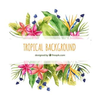 水彩の性質を持つ熱帯の背景