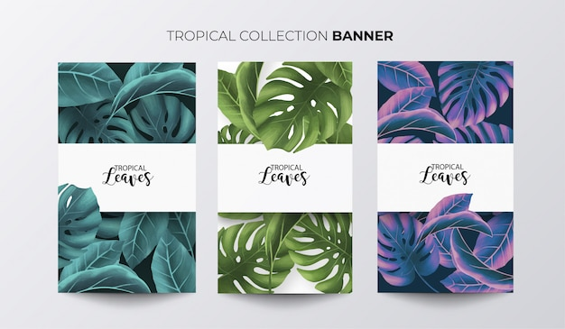 Tropical banner collection