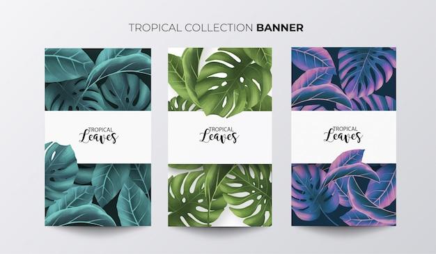熱帯のバナーコレクション