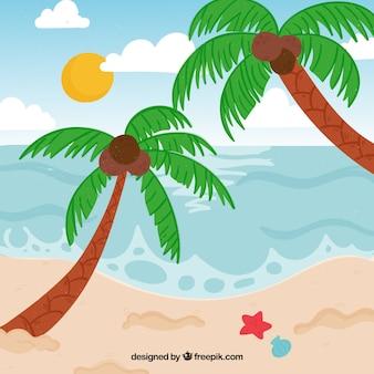 야자수와 열 대 해변 배경