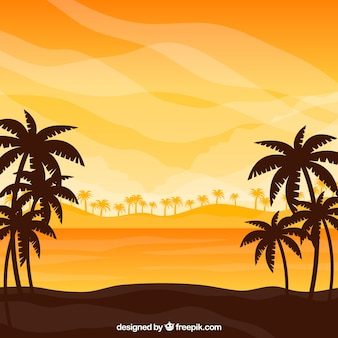 Tropical beach background with sunset