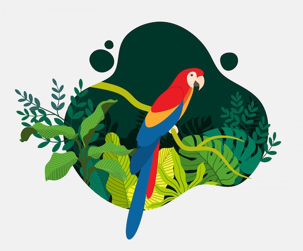 Tropical bird parrot cartoon animal