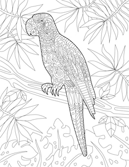 Tropical birds doodles on trees hand drawing pelican linflamingo tree illustration wild life line