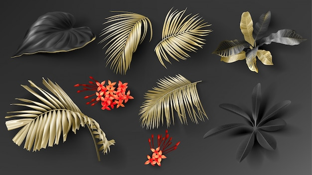 Tropical black and gold leaves set