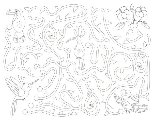 Tropical black and white maze for children. preschool exotic activity. funny jungle puzzle with cute parrot, hoopoe and toucan. help the bird get to the flowers game.