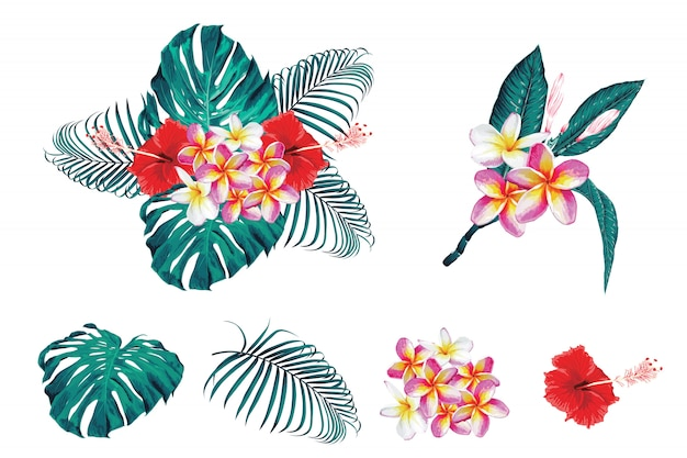 Tropical botanical bouqet floral with frangipan, hibiscas flowers and monstara,palm leaves.