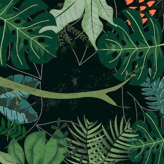 Tropical botanical jungle forest