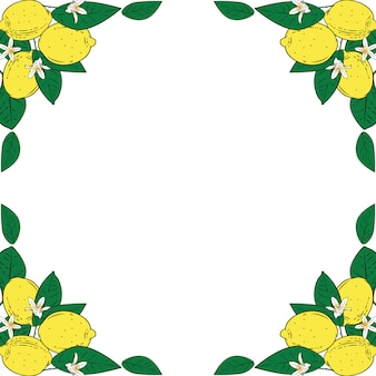 Tropical citrus lemon fruits with flowers frame. summer colorful background