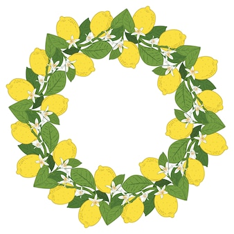 Tropical citrus lemon fruits with flowers round frame
