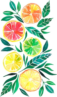 Tropical citrusorange lemon grapefruit watercolor