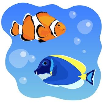 Тропическая рыба-клоун рыба-хирург