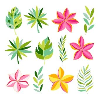 エキゾチックな花と葉のトロピカルコレクション。