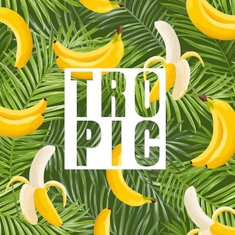 Tropical design with banana and palm leaves