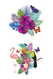 Tropical and exotic bird with floral decoration vector illustration design