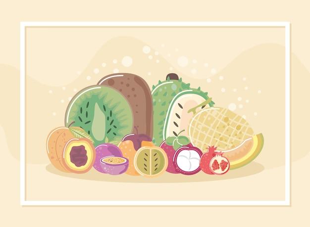 キウイピーチメロンイラストなどの熱帯のエキゾチックな新鮮な果物