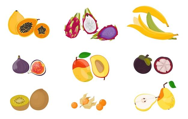 熱帯のエキゾチックなフルーツセット。生のベジタリアンフード。白で隔離のイラスト漫画フラットアイコンコレクション。