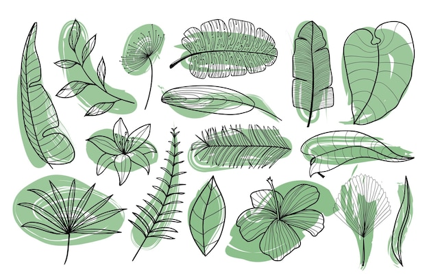 Tropical exotic palm leaves collection outline hand drawn palm leaves in black and white colors