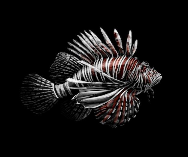 熱帯魚。黒の背景にミノカサゴの肖像画。ベクトルイラスト