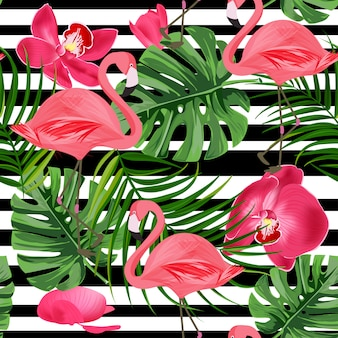 Tropical flamingo background.