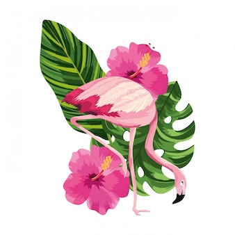 Tropical flamingo cartoon