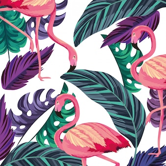 Tropical flamingos cartoon