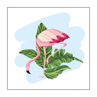 エキゾチックな葉の植物と熱帯のフランドル