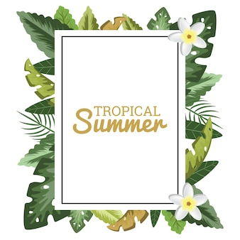 Tropical floral border frame