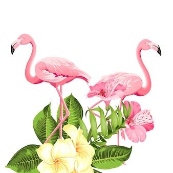 熱帯の花と白い背景のフラミンゴ。ベクトルイラスト。