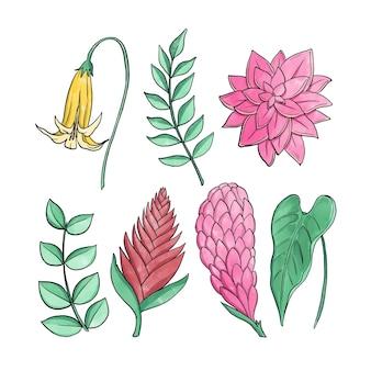 熱帯の花と葉のコレクションのコンセプト