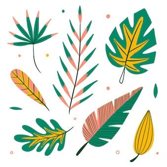 熱帯の花と葉のコレクション 無料ベクター