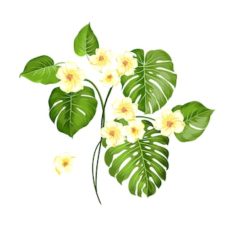 熱帯の花と白い背景の上の手のひら。ベクトルイラスト。