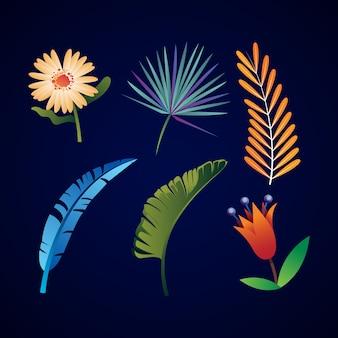 Tema di raccolta di fiori e foglie tropicali