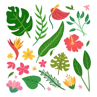 Tropical flower and leaf pack