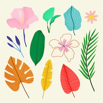 Tropical flower and leaves collection