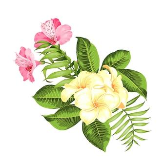 흰색 바탕에 열 대 꽃입니다. 벡터 일러스트 레이 션.