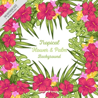 Tropical flower & palm background