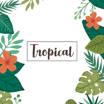 Tropical flower and tropical leaf element