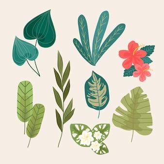 Набор тропических цветов и листьев