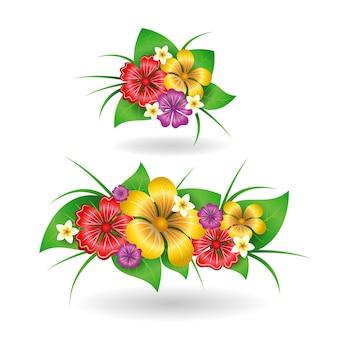 Tropical flowers decor elements