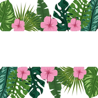 熱帯の花の葉の葉