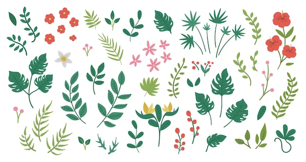 Тропические цветы, листья и веточки