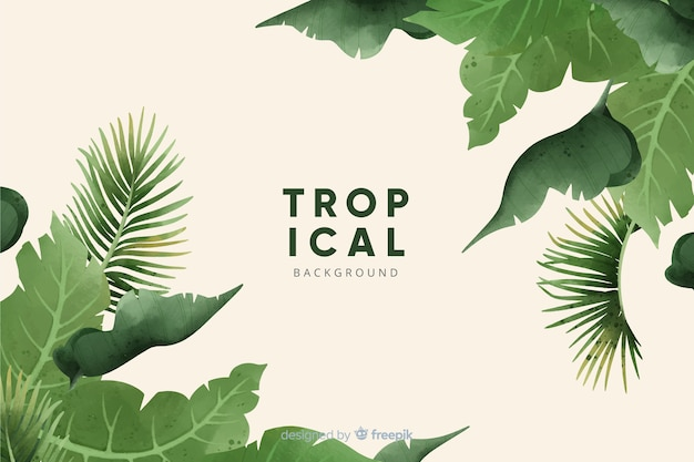 Tropical flowers and leaves collection
