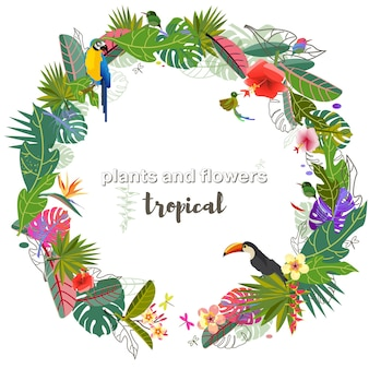 Tropical flowers and leaves exotic monster leaf caribbean colors tropical style