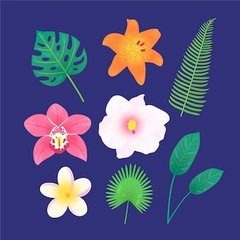 Tropical flowers and leaves pack