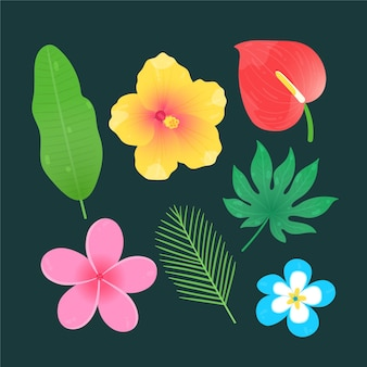 Tropical flowers and leaves set
