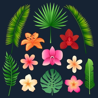 Tropical flowers and palm leaves