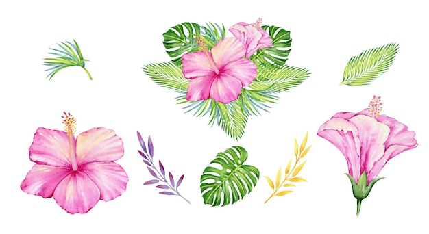 Tropical flowers and plants, flowers, and leaves. watercolor set.