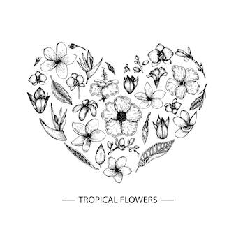 熱帯の花はハート形に設定します。グラフィックの手は、花のイラストをdrれさせます。手描きプルメリア、カンナ、ハイビスカス、蘭の分離。スケッチスタイルの熱帯デザイン要素