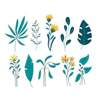 白い背景で隔離の葉と熱帯の花